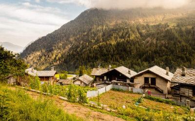 La nostra azienda agricola di montagna tra fatiche e passione